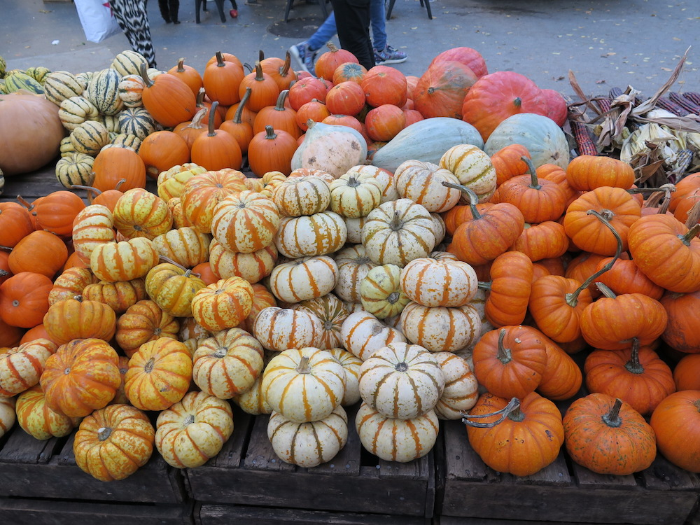 thanksgiving-gourds-pumpkins-market
