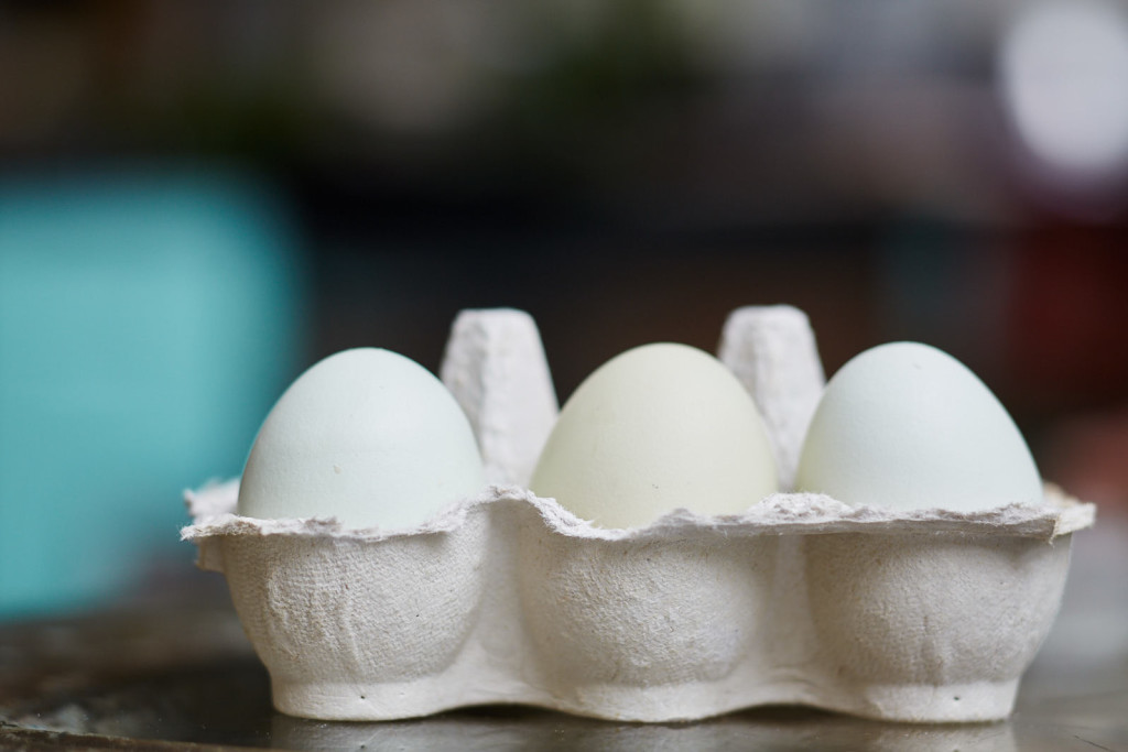 Caroline Byron eggs in box